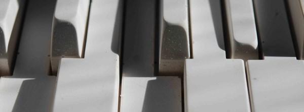 DSC_0924 - SMALLER (600 x 222) RESIZED